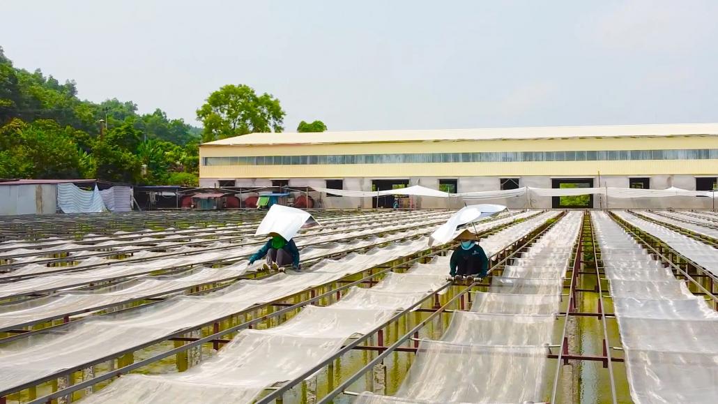 Thái Nguyên - điểm kết nối cung cầu khoa học công nghệ thứ 10 trên toàn quốc