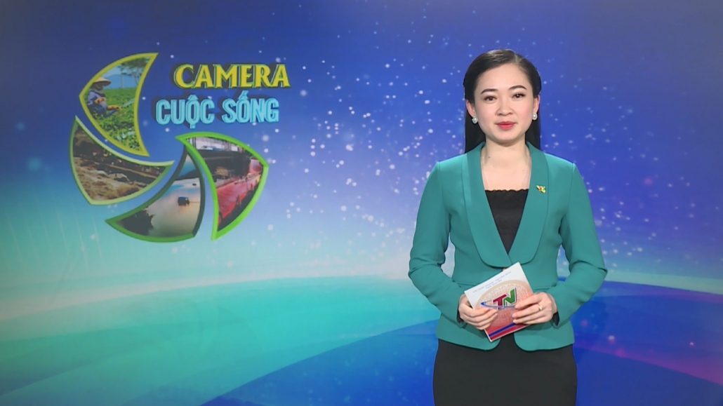 Camera cuộc sống ngày 10/4/2021
