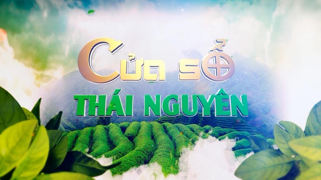 Cửa sổ Thái Nguyên ngày 5/1/2021